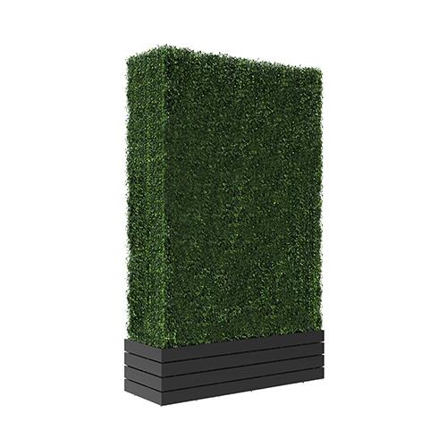 Hedge Wall II